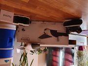 Drohne Parrot Disco FPV