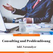 Consulting und Problemlösung inkl Voranalyse