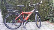 Fahrrad Mountainbike Jugendfahrrad