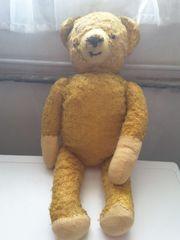 Teddy aus Grossmutters Kindheit