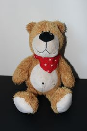 Teddy Sunkid
