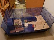 Hamster Käfer