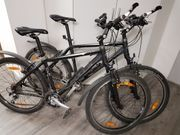 Mountain-Bike BULLS King Cobra