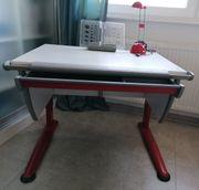 MOLL Schreibtisch und Scout Drehstuhl