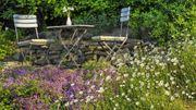 Wir suchen einen Garten Schrebergarten