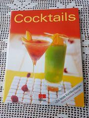 Neuweriges modernes großformatiges Taschenbuch Cocktails