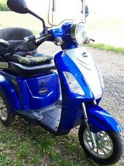 Rolektro Eco-Trike 25 kmh