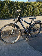 Bergamont Fahrrad Jugendrad MTB ATB