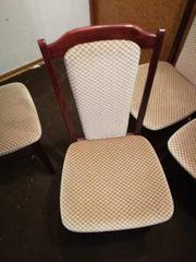 5 Stühle Esszimmer