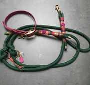 Hundeleine und Halsband 2m 2fach