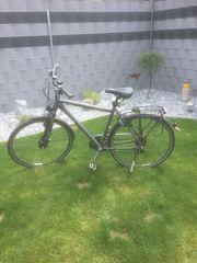 Fahrrad Gudereit LC75 Herren 53cm