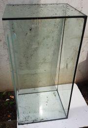 Glas Aquarium