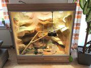 Schönes Wüsten-Steppenterrarium von Hoppe Terrariumbau