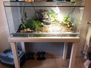 120 cm langes Terrarium komplett