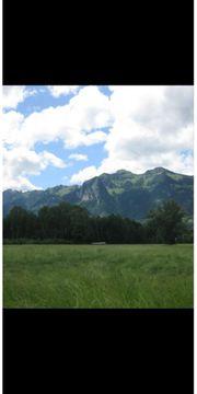 Baugrundstück in Feldkirch zu verkaufen
