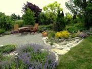 Suche einen sonnigen Garten zum