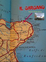 Wohnung in Italien-71018 VICO del