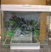 Aquarium Juwel Vio 40 Designer