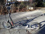Tretroller und Dreigangrad