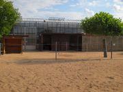 Offenstallplatz für Pony in Nbg