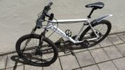 KS Cycling GTZ 3850 Mountainbike