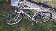 Originales Schauff Trekking Rad
