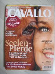 NEU ungelesen Zeitschrift CAVALLO 11