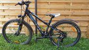 Kinder- Jugend- Mountainbike 26 37