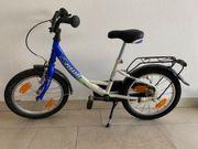 Pegasus Kinder Fahrrad 16 Zoll