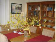Wohnzimmerschrank oder Esszimmerschrank Kirschbaumholz sehr