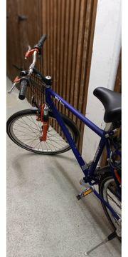 Herren-Bike 26