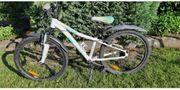 Cannondale Fahrrad 24 7 - Gang