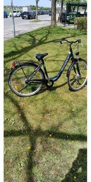 torpedo Damen Fahrrad 28 Zoll