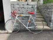 Rennrad Retro Vintage Herrenrad Peugeot
