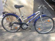 Kinder-Cross-Bike Pegasus