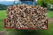 Brennholz günstig ofenfertig - 50 cm