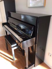 Hoffmann Klavier V 112 von