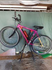 Fahrrad mit Fahrradhalter