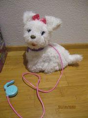 Furial friends Hund