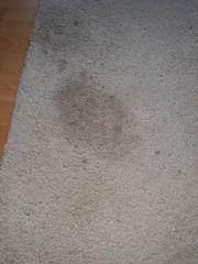 Teppich Schurwolle weiss