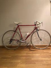 Rennrad Milanetti aus den 80gern -
