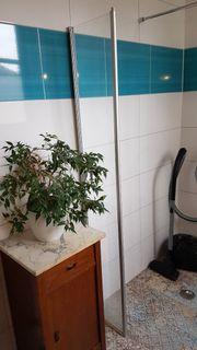 Duschkabienen-Tür