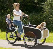 Soci Bike - das ultimative Lastenrad -