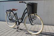 City Bike Damen Pegasus 7