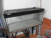 Aquarium 100 cm x 45