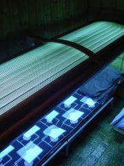 Solarium Solarmobil für den ganzen
