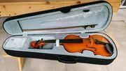 Parrot Violine Geige Art No