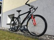 Mountainbike - Damenfahrrad der Marke FOCUS