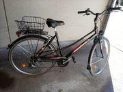 Fahrrad Mc Kenzie letzter Preis
