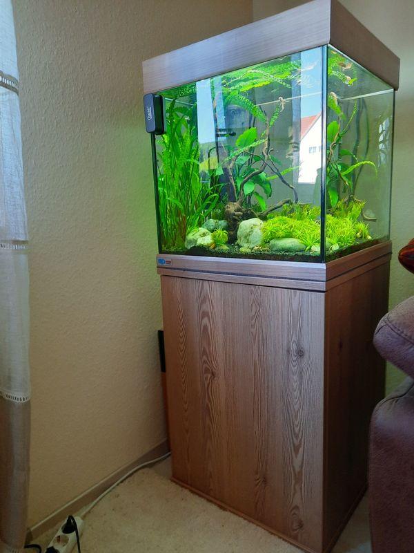 Aquarium Würfel komplett mit Unterschrank